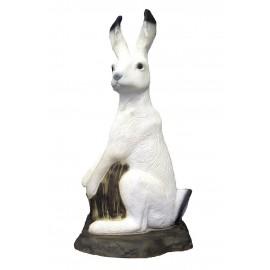 SRT Lièvre blanc